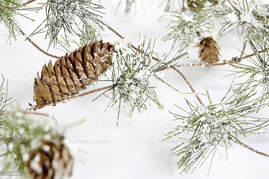 Winter Decorations royalty-free stock photo