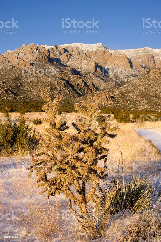winter desert mountain landscape stock photo