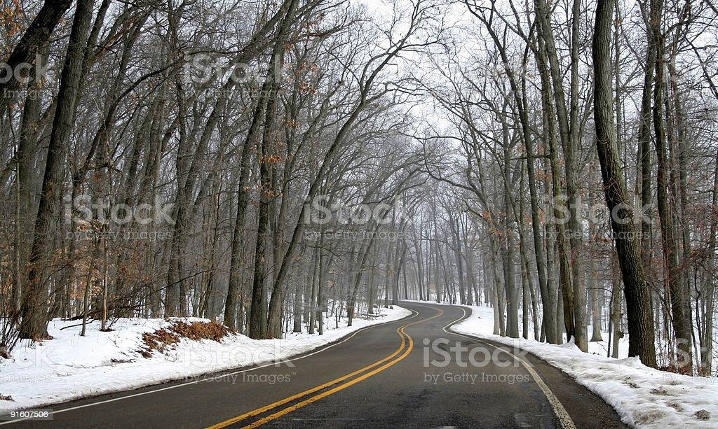 Winter Drive Way royalty-free stock photo