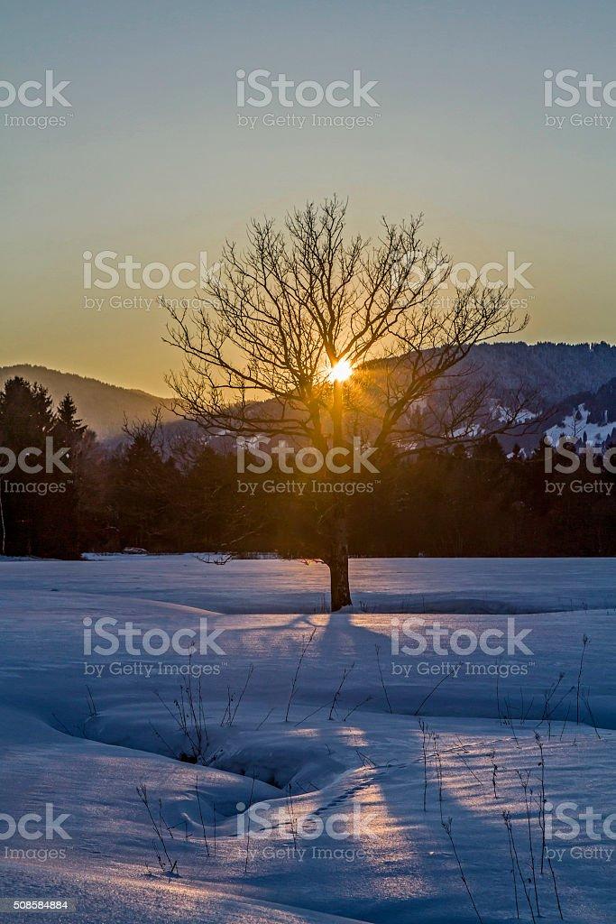 Winter evening in Isarwinkel stock photo