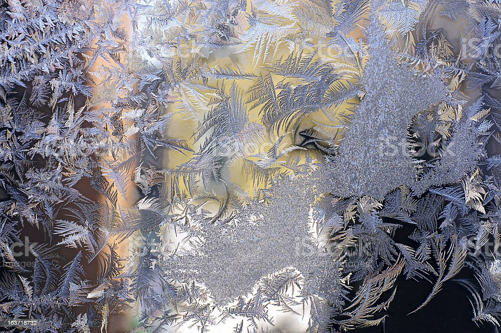 Winter Feathers royalty-free stock photo