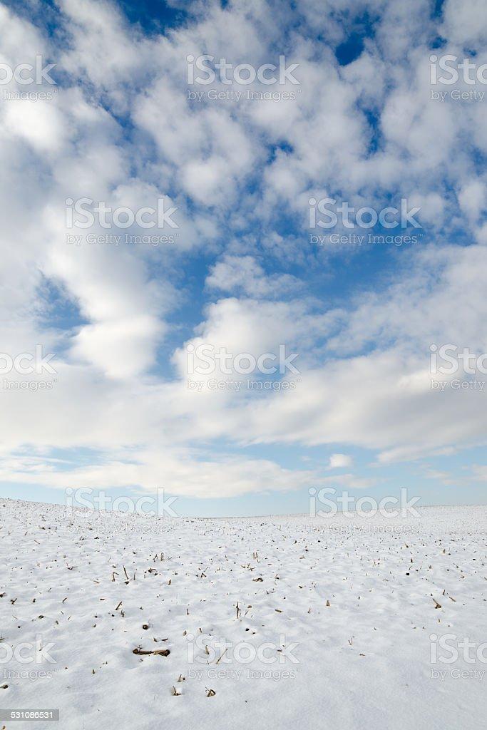 D'hiver field photo libre de droits