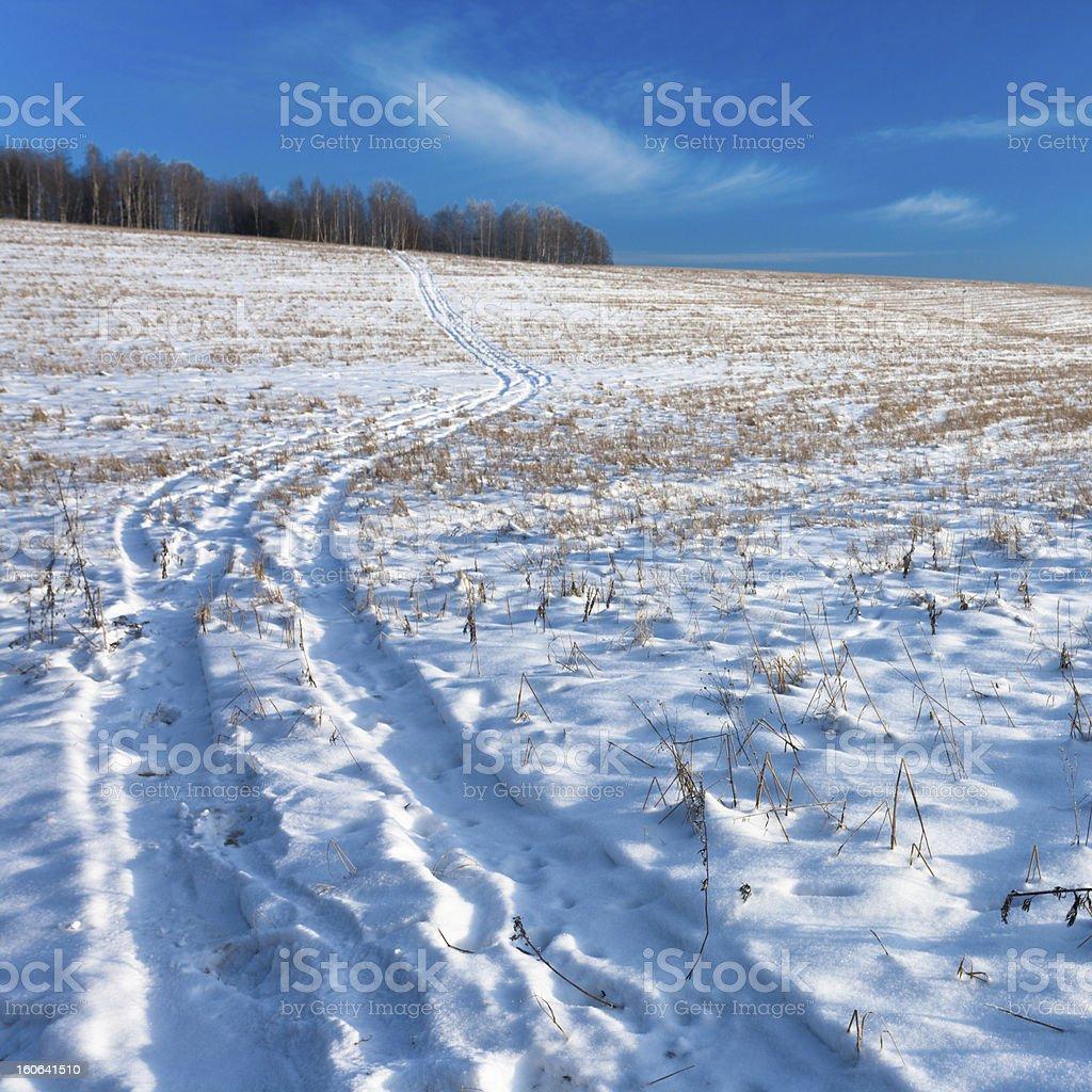 Winter Field Road royalty-free stock photo
