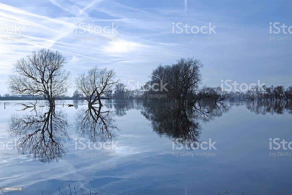 Winter flood at the Havel River - Winterhochwasser stock photo