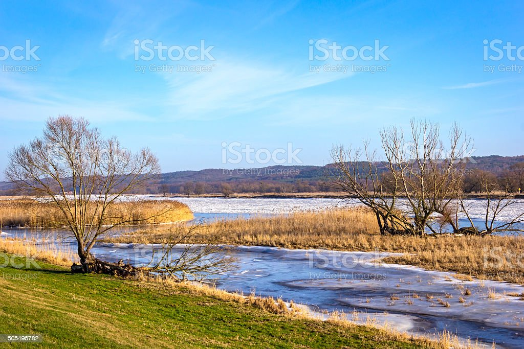 Winter flood at the Oder River in January. stock photo