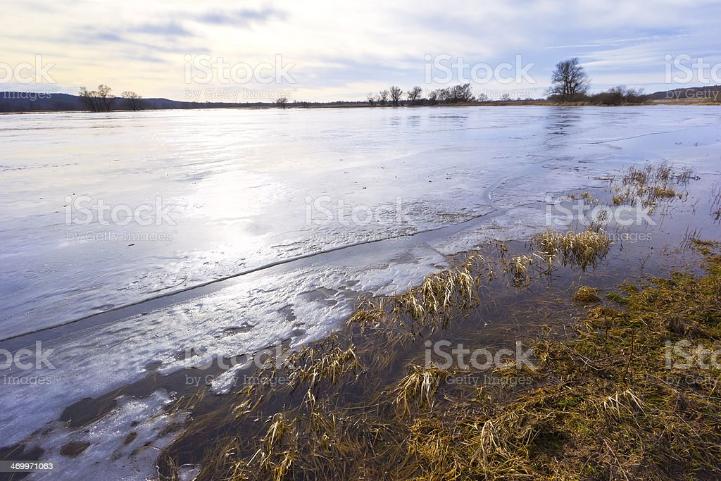 Winter Flood at the River Oder stock photo