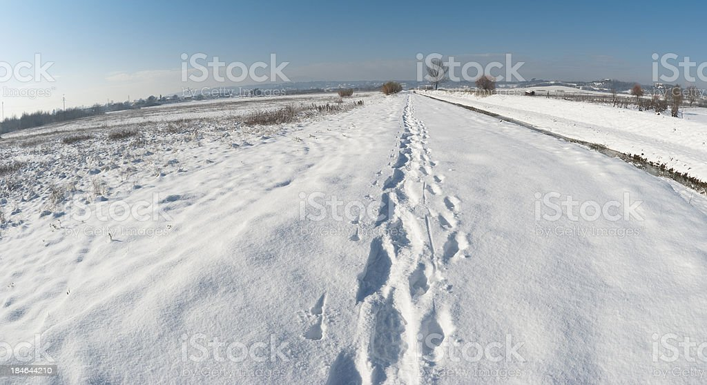 Winter footpath on the snow royalty-free stock photo