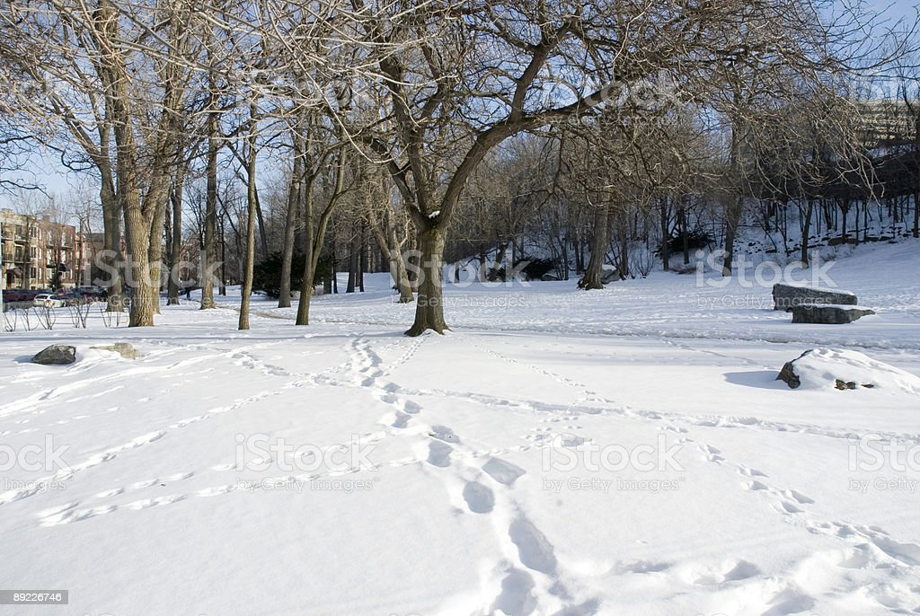 Winter Footsteps stock photo