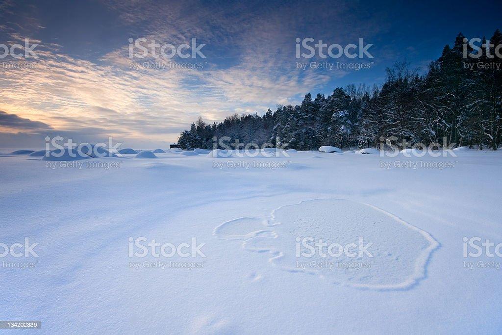 Winter forenoon royalty-free stock photo