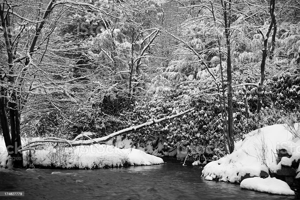 winter forest river under snow royalty-free stock photo