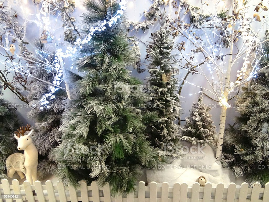 Winter Forestwoodland Display Christmas Trees Snow Fairy