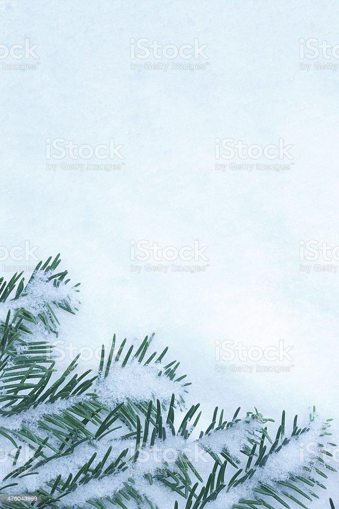Winter Frame royalty-free stock photo