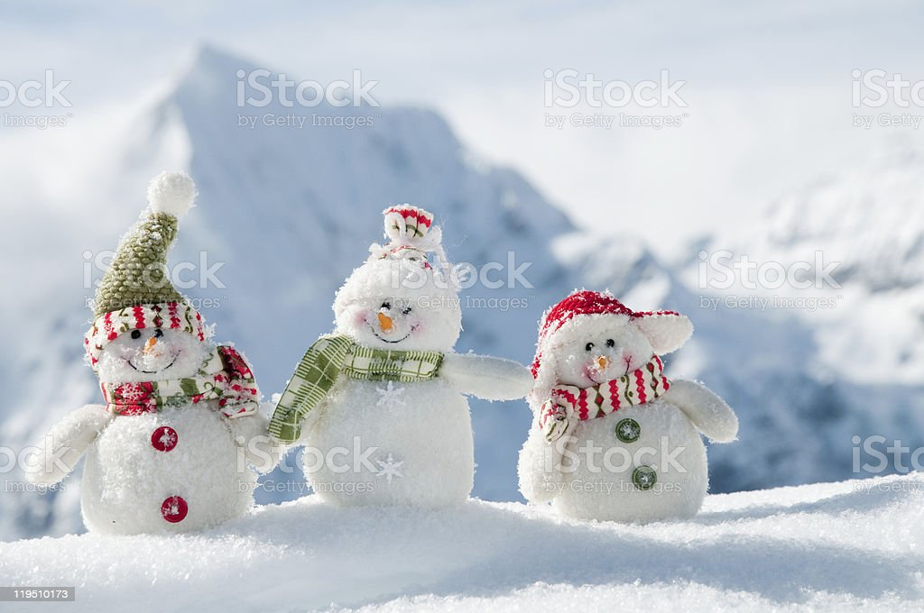 Winter friends royalty-free stock photo