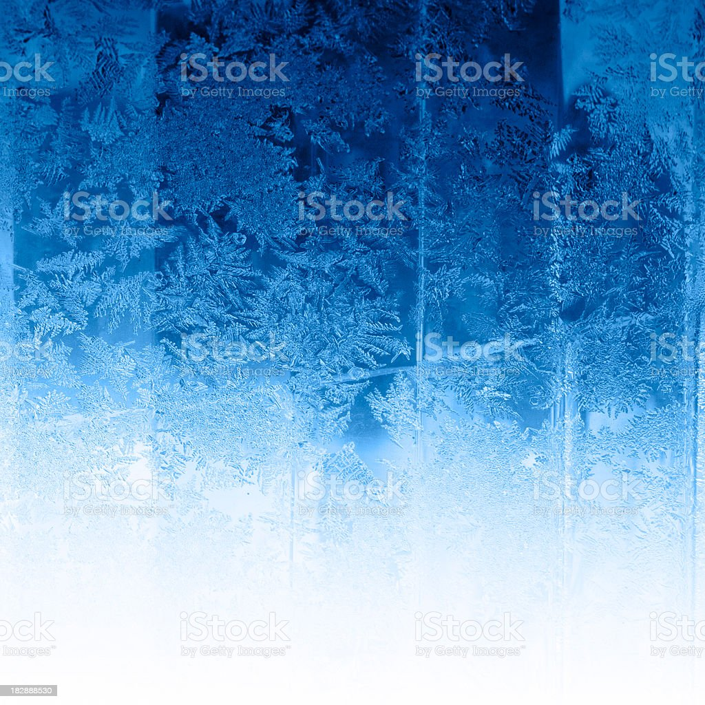 Winter frost background stock photo