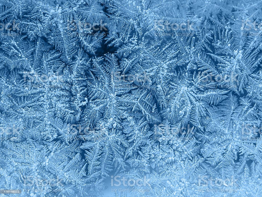 Winter Frost stock photo
