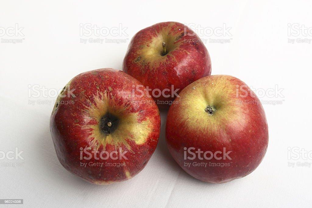 Winter fruit royalty-free stock photo