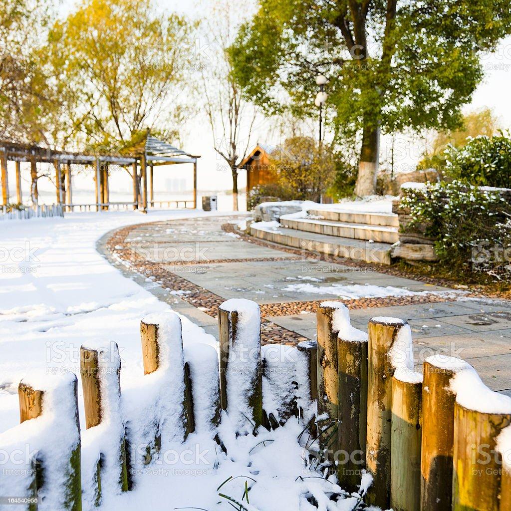 winter garden royalty-free stock photo