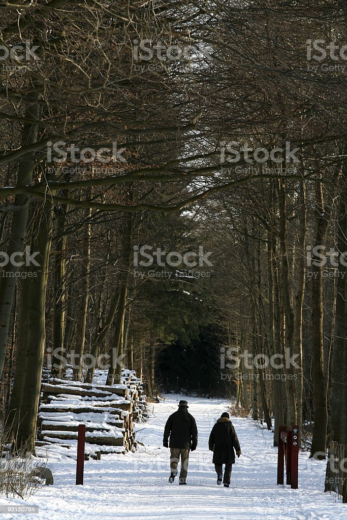 winter generation royalty-free stock photo