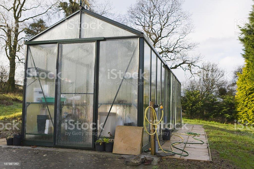 Winter Greenhouse royalty-free stock photo