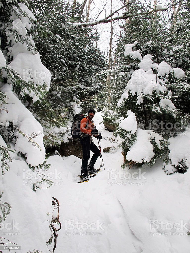 Winter Hiker on the Trail royalty-free stock photo