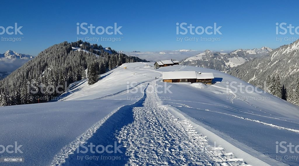 Winter hiking and sledging path on Mt Hohe Wispile stock photo