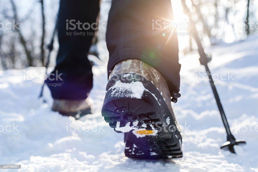 Winter hiking. stock photo