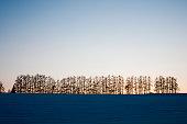 Winter hill of dusk