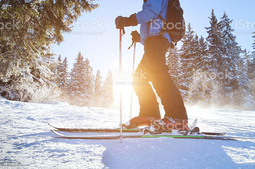 winter holidays, ski stock photo