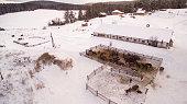 Winter horse farm in . Ural Mountains, Bashkortostan, Russia. Aerial view
