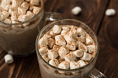 Winter hot cocoa with marshmallows