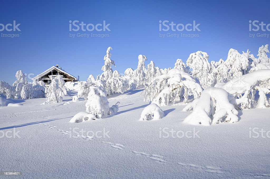 Winter, hut and tracks in snow covered landscape royalty-free stock photo