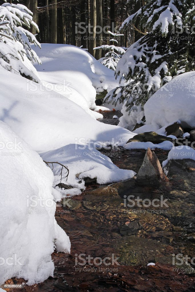 Winter Impression Taunus, Germany stock photo