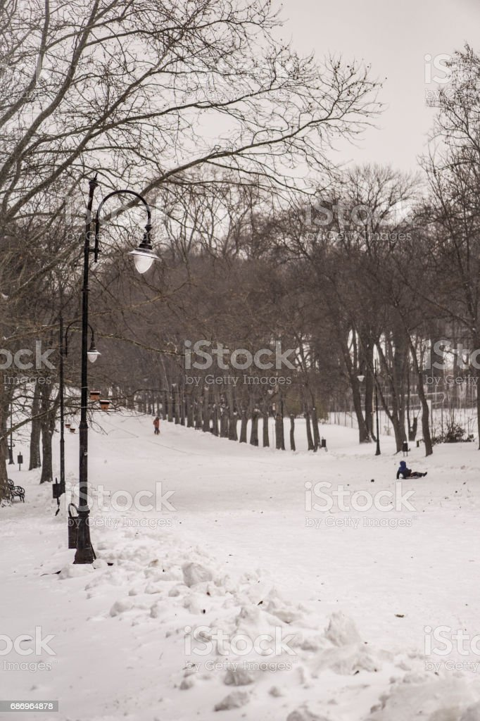 Winter in a park with vintage streetlights, trees and a child on a sled stock photo