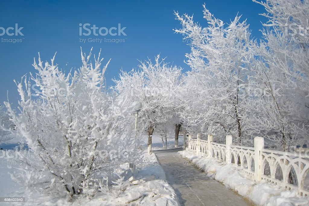 Winter in Baikonur, Kazakhstan stock photo