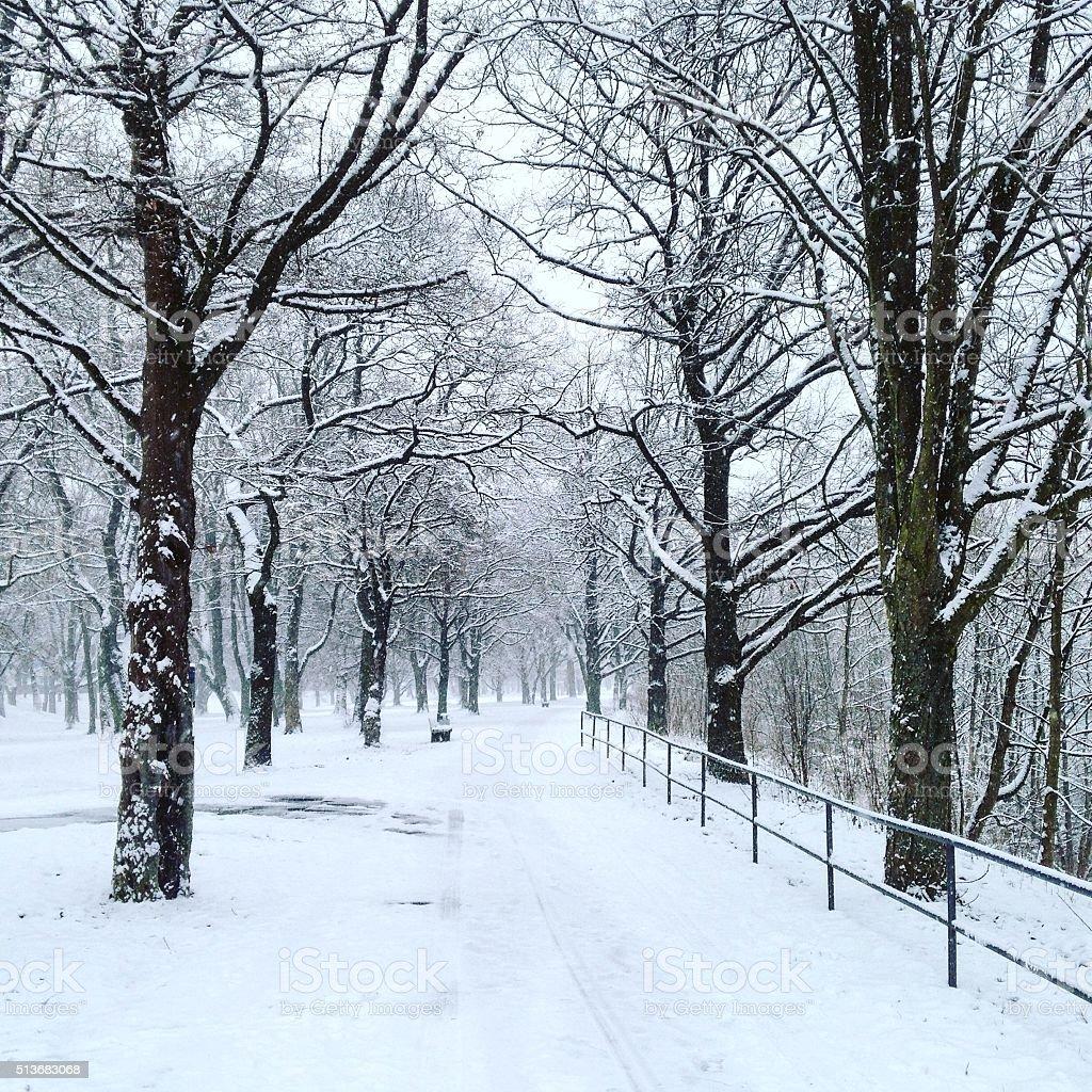 Winter in Bamberg stock photo