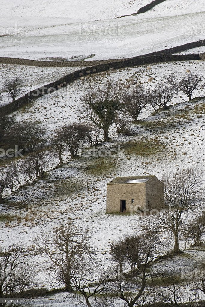 Winter in Bishopdale stock photo