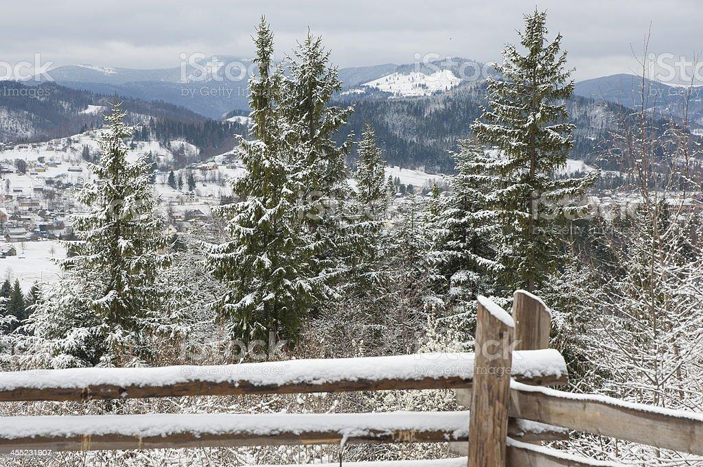 Winter in Carpathian Mountains. stock photo