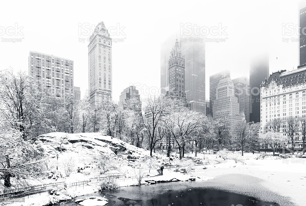 Winter in Central Park, NY stock photo