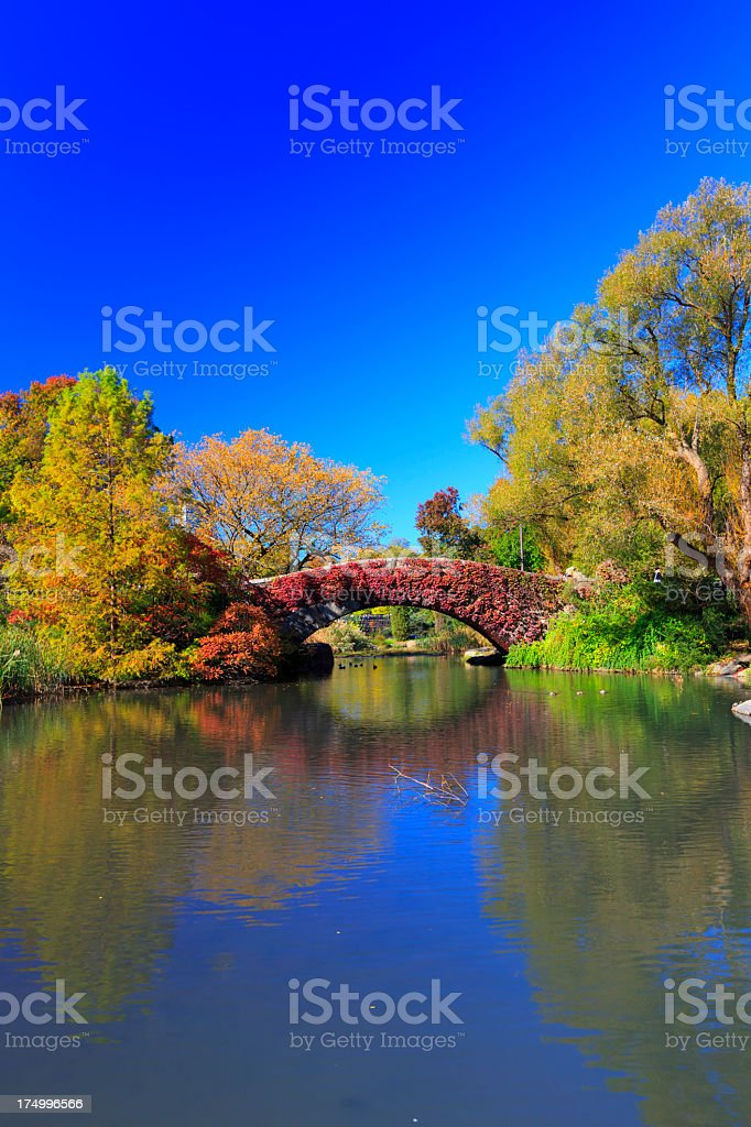Winter in Central Park NYC royalty-free stock photo