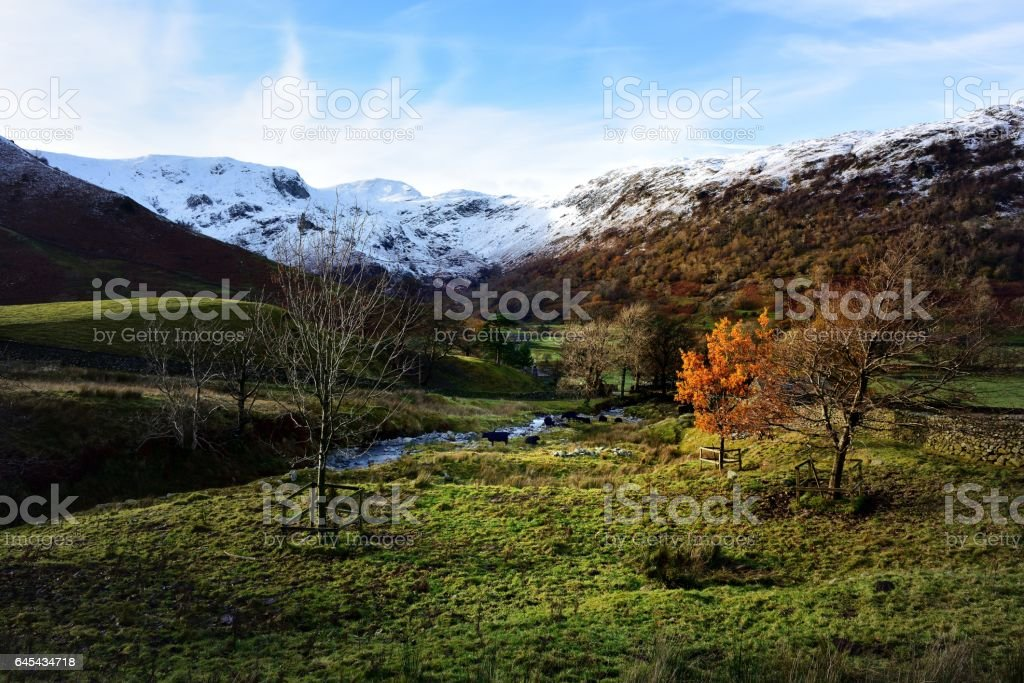 Winter in Dovedale stock photo