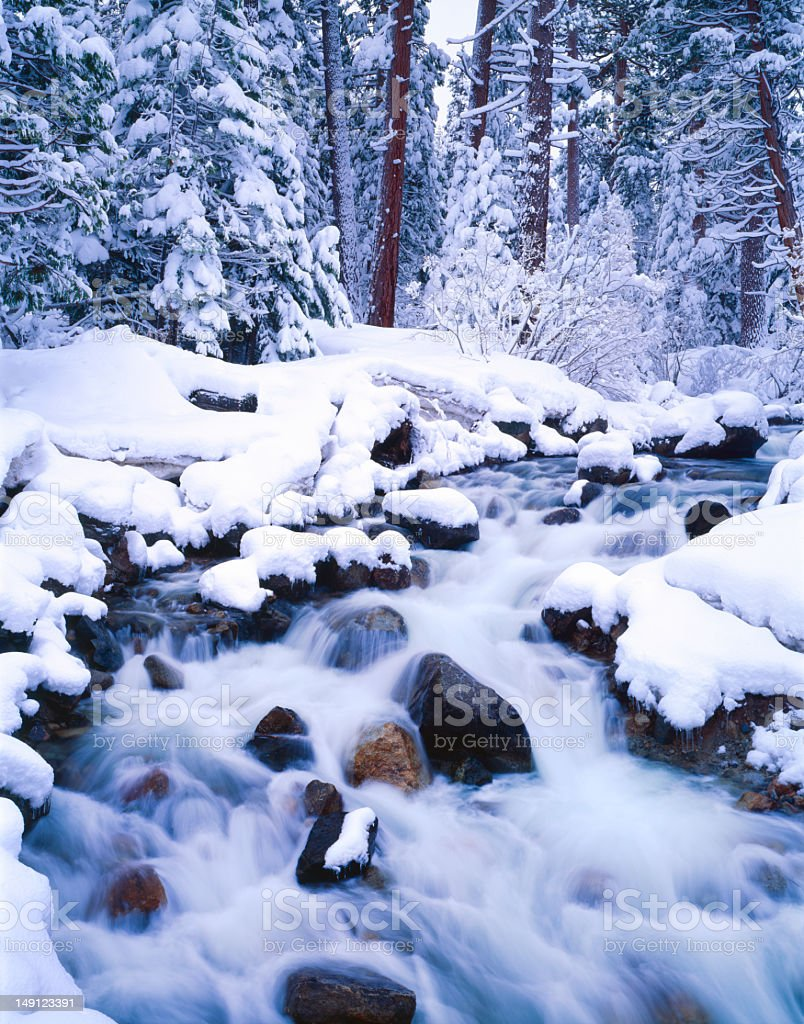 Winter In Emerald Bay State Park, California royalty-free stock photo