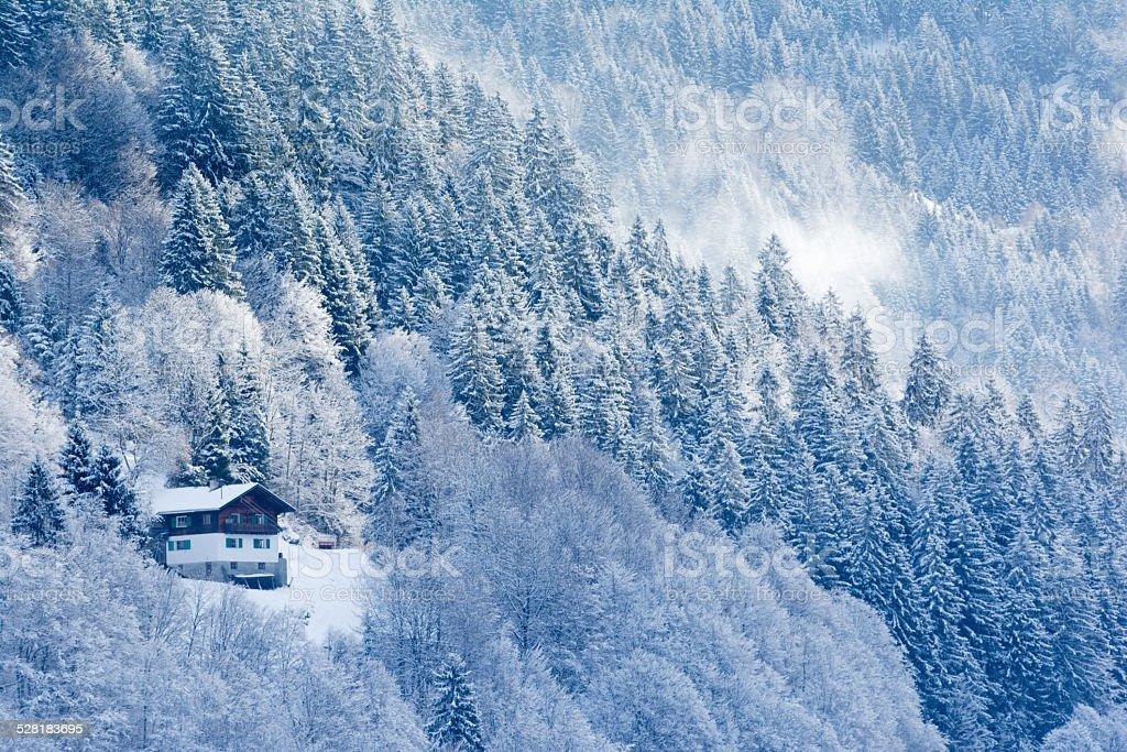 Winter in Montafon, Austria stock photo