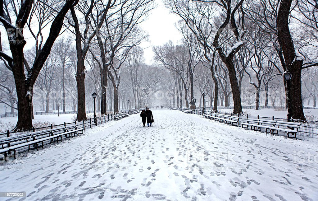 Winter in New York City Central Park stock photo
