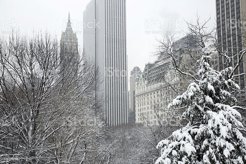 Winter In New York royalty-free stock photo