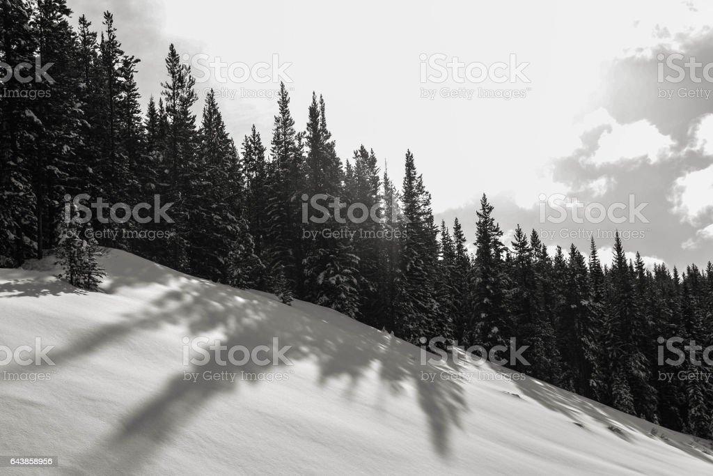 winter in rockies stock photo