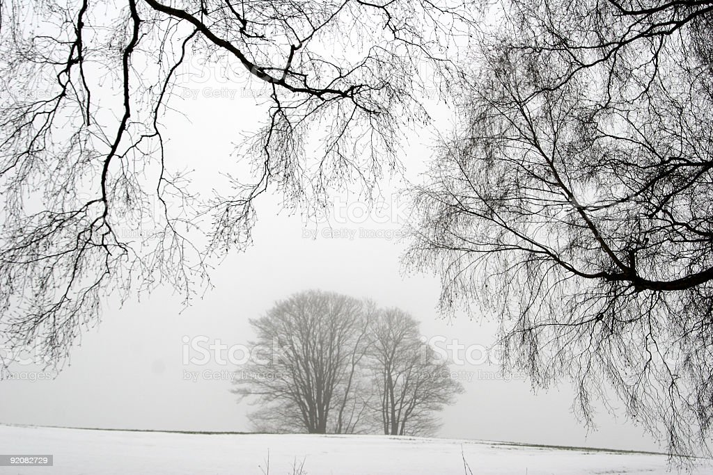 winter in scandinavia royalty-free stock photo