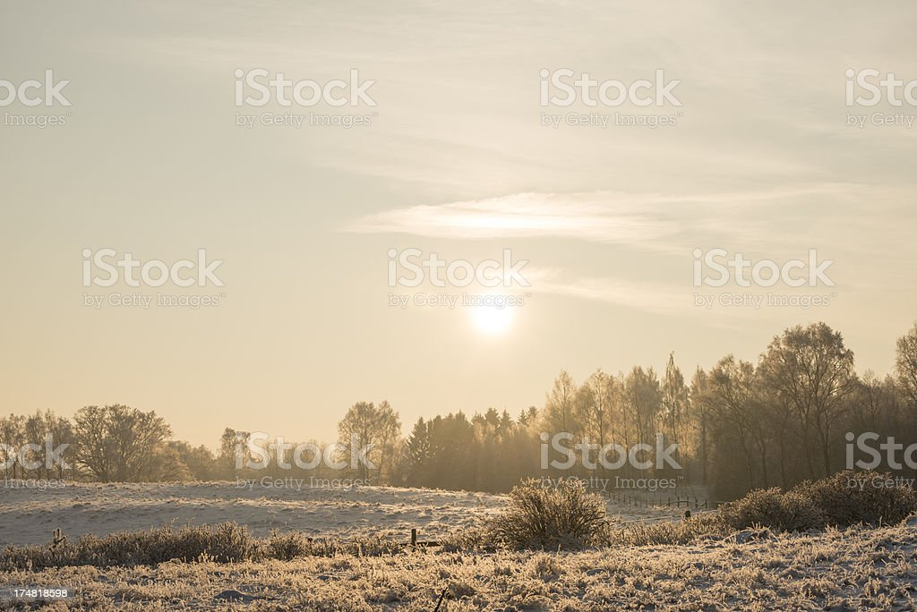 Winter in southern Sweden (XXXLarge) royalty-free stock photo