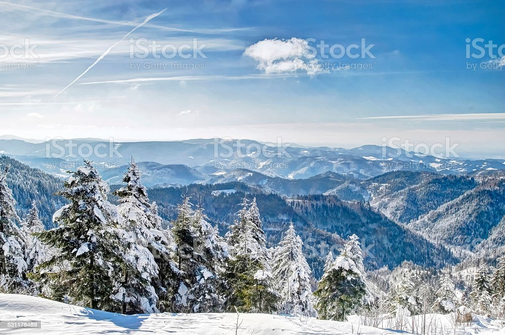 Winter in the Black Forest, Germany stock photo