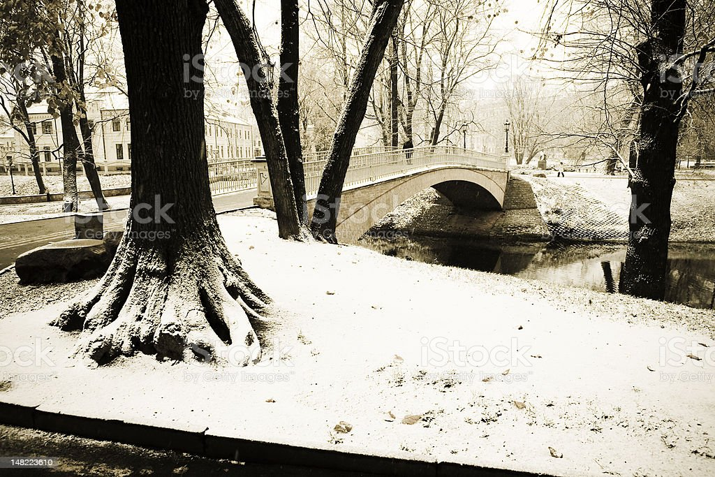 Winter in the city park royalty-free stock photo