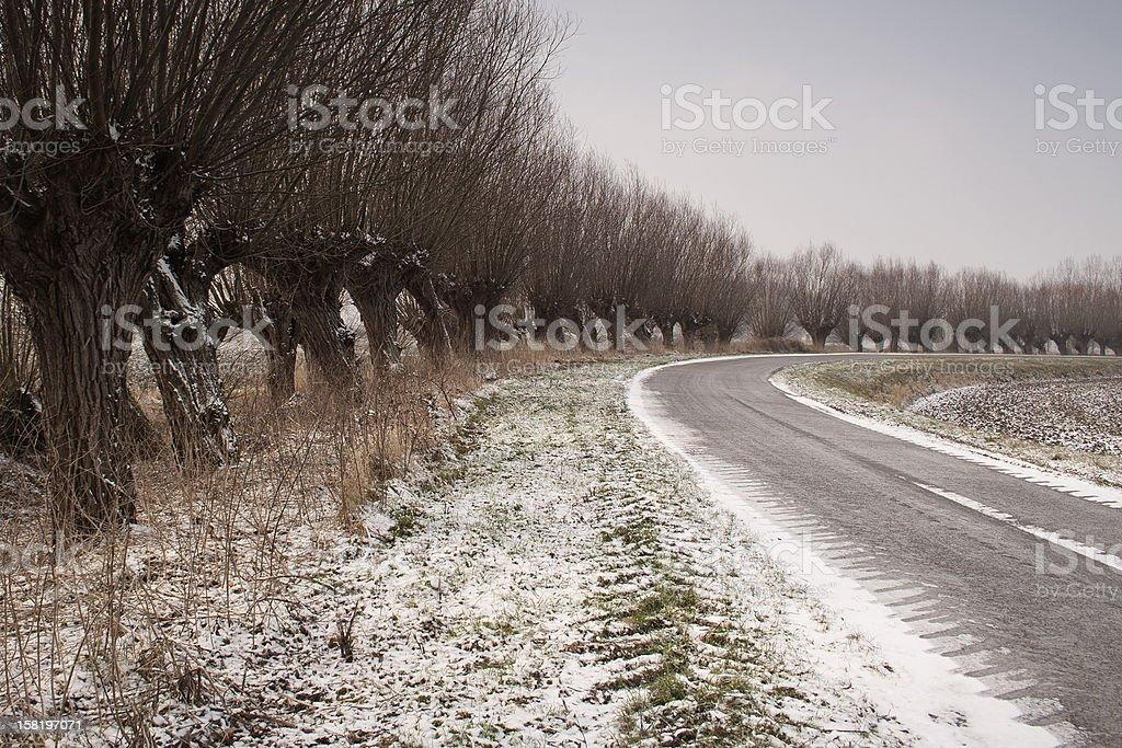Winter in the Dutch polder (Zeeuws-Vlaanderen) royalty-free stock photo